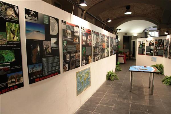 """""""La vita delle isole"""", mostra, 2011"""