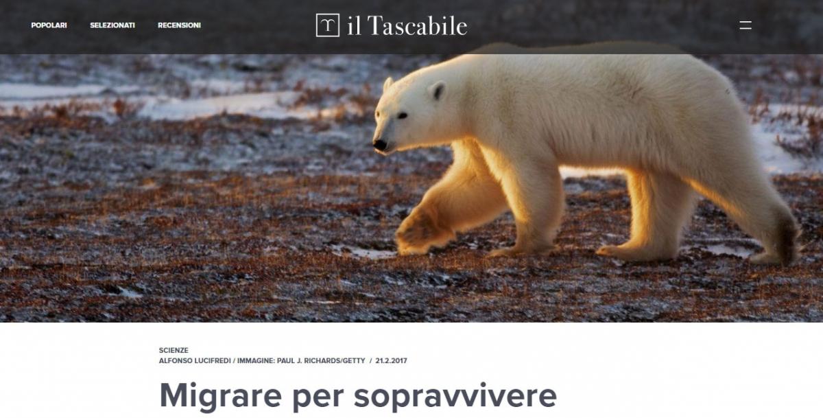 """""""Migrare per sopravvivere"""", il Tascabile, 2017"""